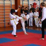 Змагання з кіокушин карате серед дітей, юнаків і дівчат в розділі «куміте»